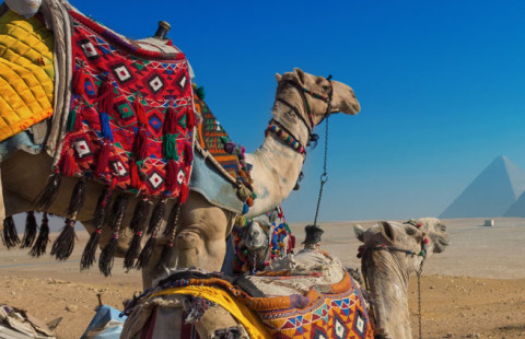 Egypte zonvakanties met TravelXL